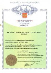 patent2308799