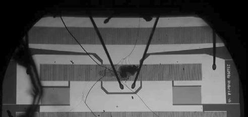 в) Рис.1. Изменение структуры пленки алюминия в ВШП при воздействии радиосигнала мощностью 2,5 Вт различной длительности: а – после 2 минут; б – после 2000 минут; в – разрушение электродной структуры